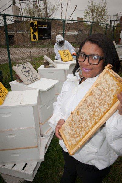 Source: Bee Love Buzz