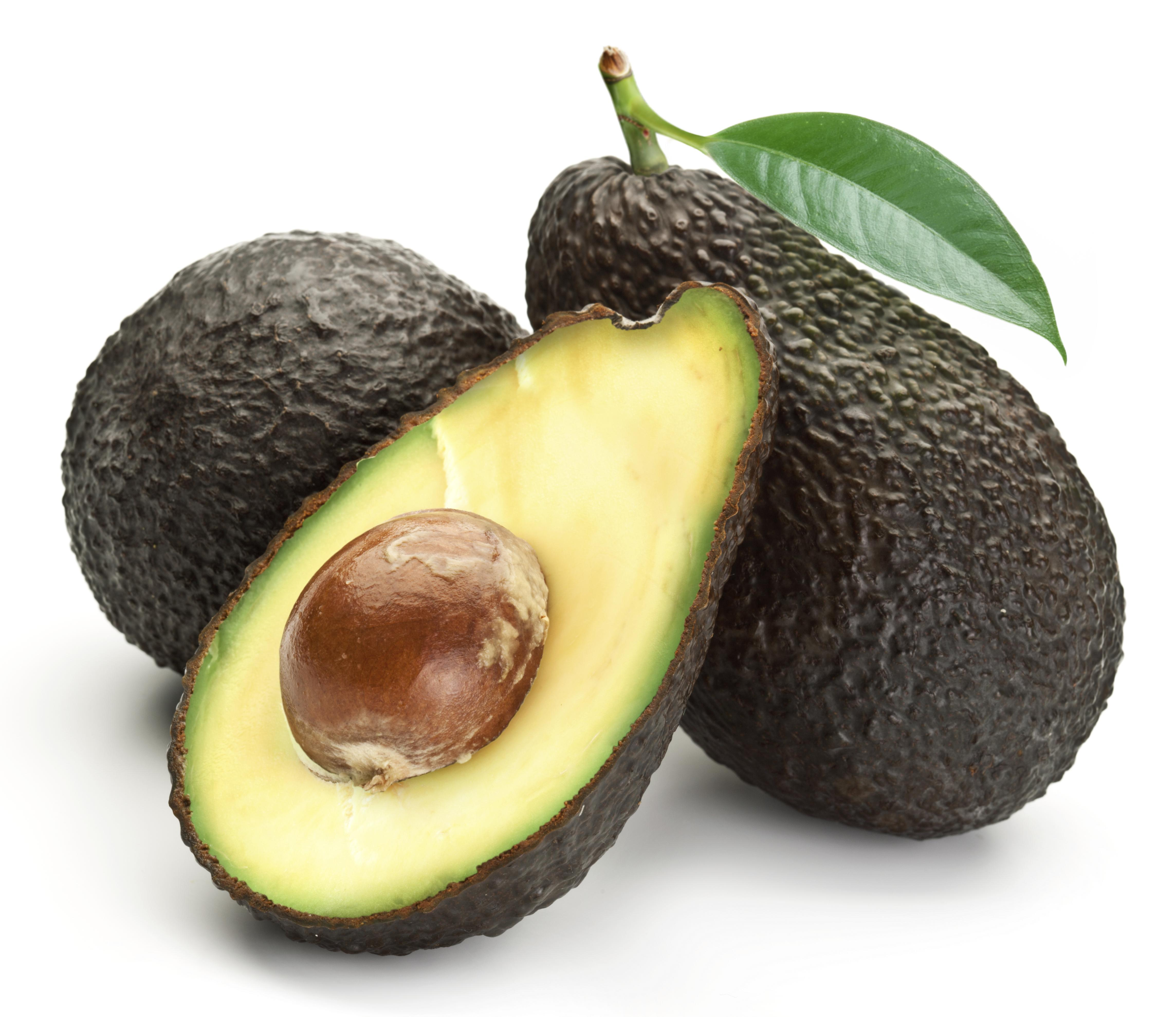 Avocados with leaves on a white background