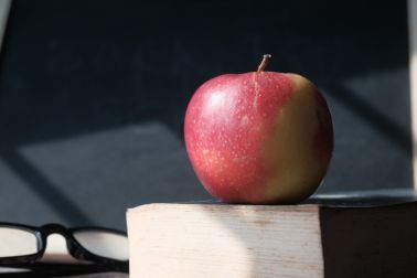 apple on book with blackboard. back to school concept