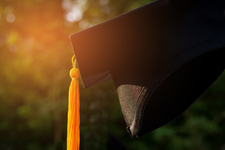 Close-Up Of Mortarboard Outdoors