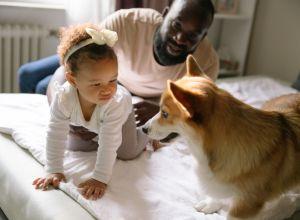 family-friendly dog breeds